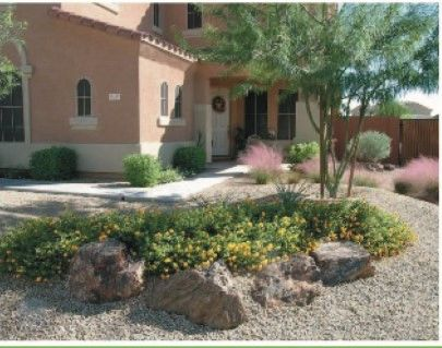 Front Yard Landscape Remodel in Phoenix by Certified Trees